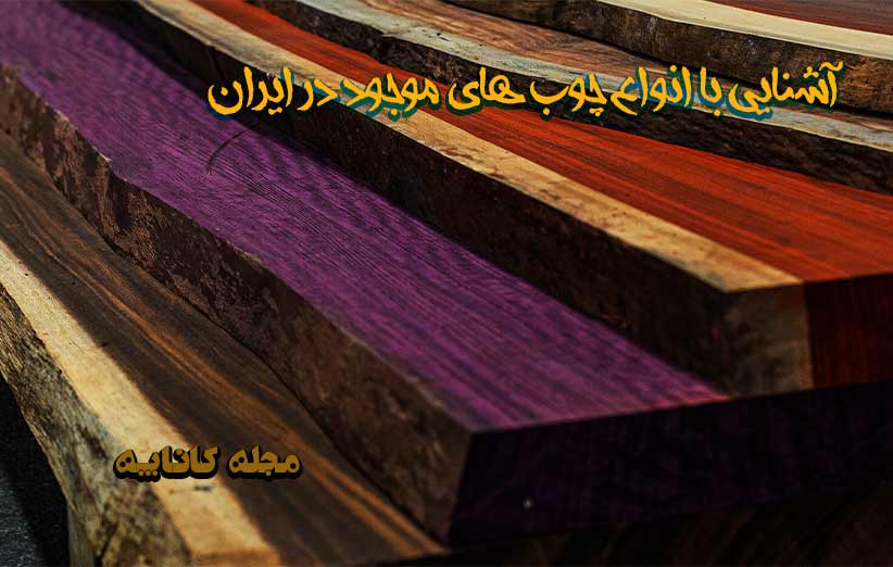 Types of wood available in Iran